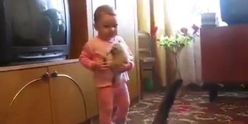 Bebê pega filhote de gato, mas a mamãe do gatinho vai la buscar!