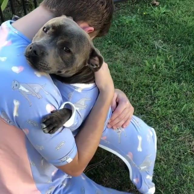 papai humano e cachorrinho vestidos com a mesma estampa que fofura