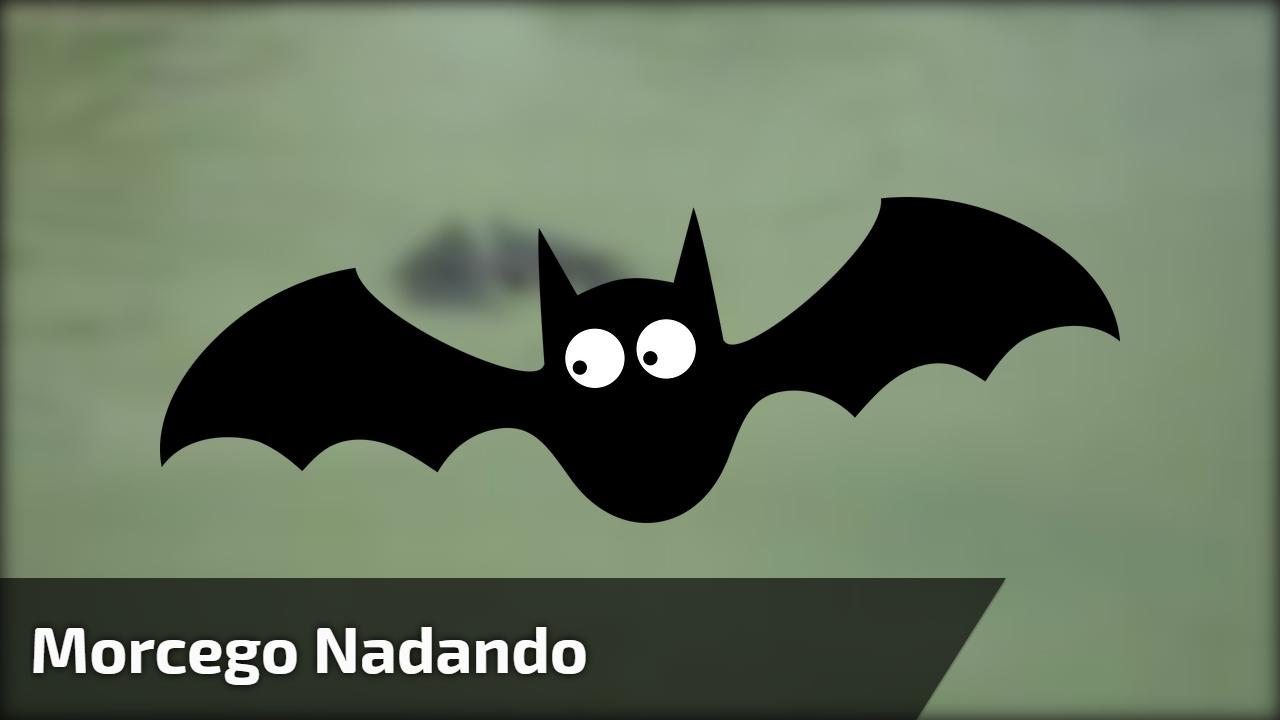 Veja s que incrvel este morcego nadando eu no sabia que eles veja s que incrvel este morcego nadando eu no sabia que eles podiam nadar altavistaventures Choice Image