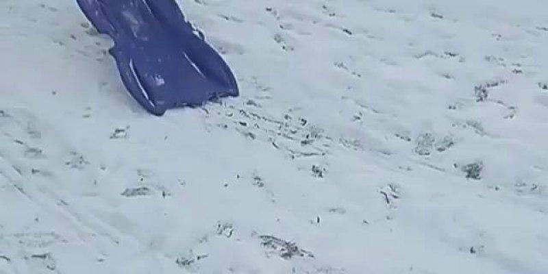 Cachorro brincando de escorregar na neve, e ele que sobe com a prancha!