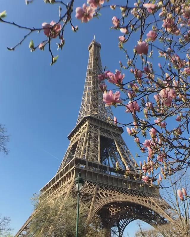 Preferência Vídeo mostrando a Torre Eiffel em Paris-França! Muito lindo!!! PS98