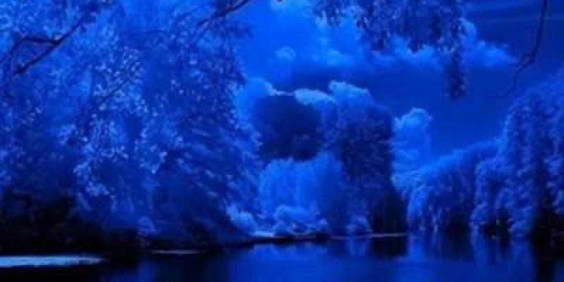 Lindos Vídeos Lindas Mensagens Oração Da Noite: Um Lindo Vídeo De Boa Noite Com Lindas Imagens Da Natureza