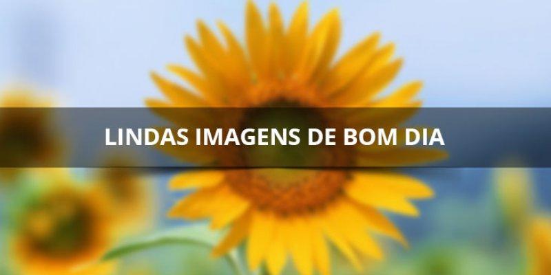 Linda S Mensagens De Bom Dia: Lindas Imagens De Bom Dia Para Facebook, Compartilhe Com