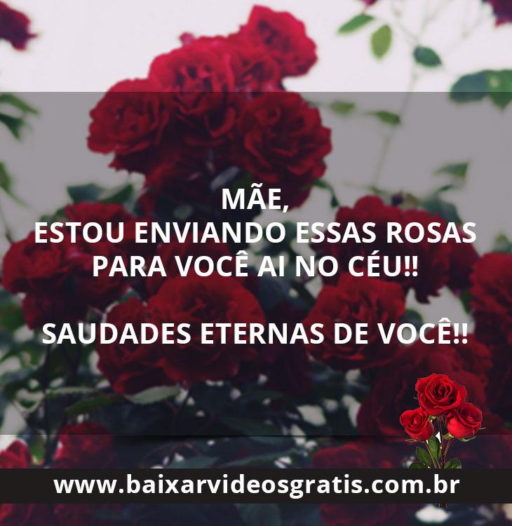 Mensagem Para Mãe Falecida Mãe Receba Essas Rosas Eu Te Amo