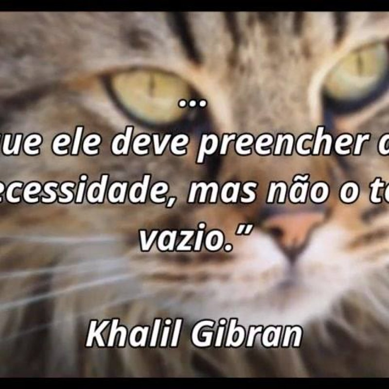 Frase De Amizade De Khalil Gibran Compartilhe Em Seu Facebook