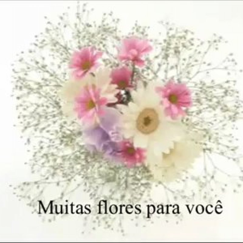 Vídeo Para Amiga Com Muitas Rosas E Flores E Mensagem De Carinho