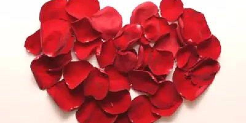 Coração Com Pétalas De Rosa Para Mandar Para Seu Ou Sua Crush