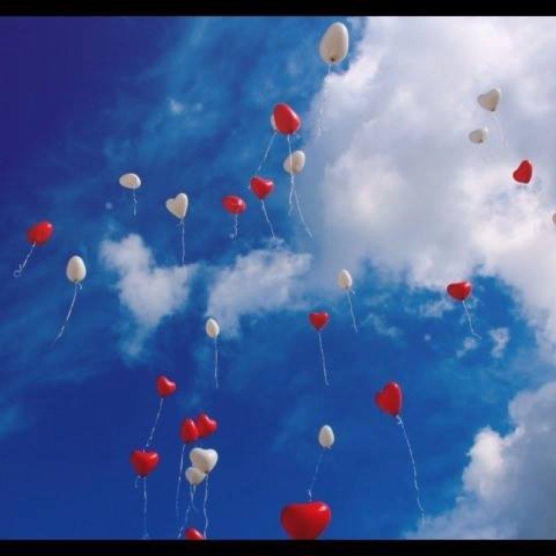 Frase De Amor Para Facebook Vamos Compartilhar O Amor Ao Proximo