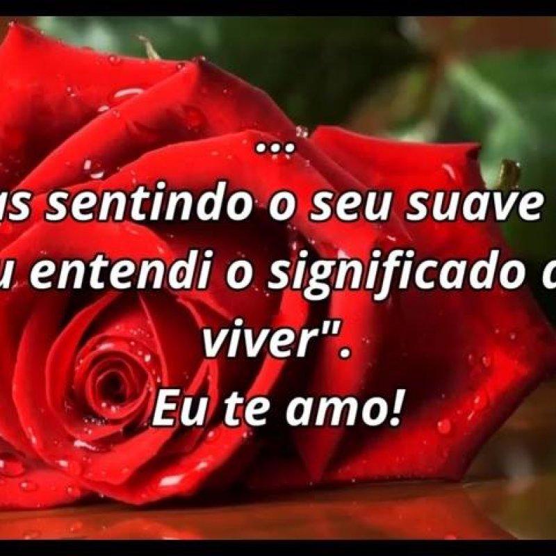 Mensagem De Amor Para Namorada Com Lindas Rosas Vermelhas