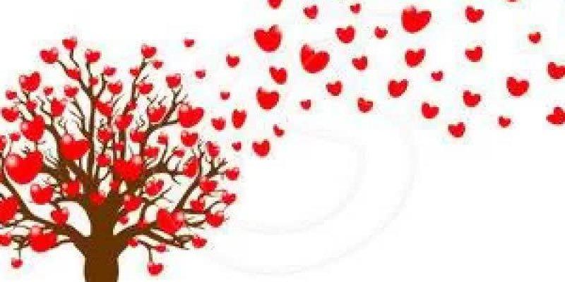 Vídeo com corações para enviar no Whatsapp do Crush e dar