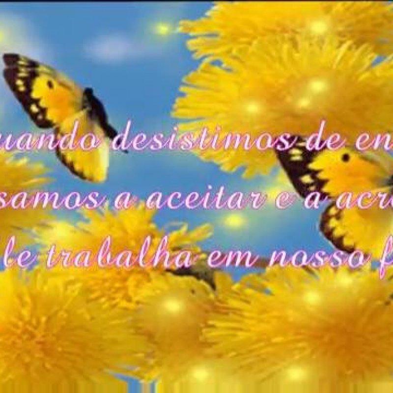 Linda Mensagem Gospel De Boa Noite Com Muitas Flores E Borboletas