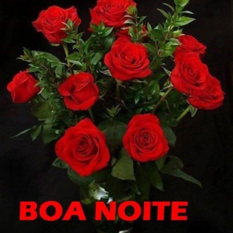 Mensagem De Boa Noite Com Lindas Imagens De Rosas Tenha Uma Linda