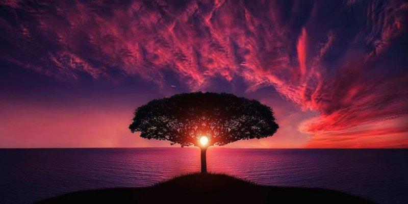 Mensagem de Boa Noite. Os sonhos são necessários para manter a alma viva!!!