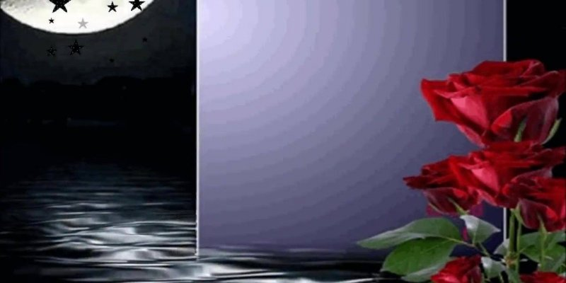Mensagens De Boa Noite Abençoado: Mensagem Linda De Boa Noite, Que Você Seja Abençoado Por