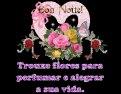 Vídeo de boa noite com flores, para perfumar a noite de seus amigos!