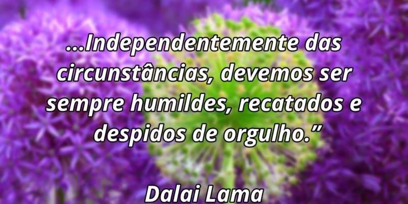 Mensagem de boa tarde com palavras de Dalai Lama, confira!