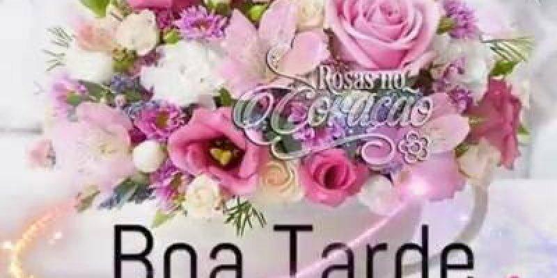 Top Lindas Flores De Boa Tarde Jc41 Ivango