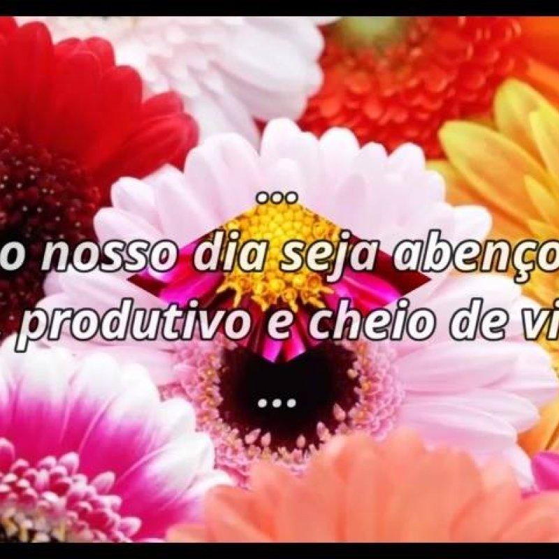 Bom Dia Com Mensagem E Flores Compartilhe Com Suas Amigas Do Facebook