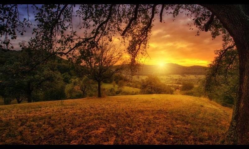 Que Seu Dia Tenha O Encanto E A Beleza De Um Lindo Dia De: Bom Dia, Que Seu Dia Seja Melhor Que Ontem, E Melhor Que