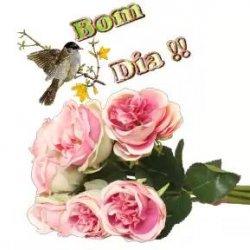 Mensagem De Bom Dia Com Rosas E Passarinhos Perfeito Para Facebook
