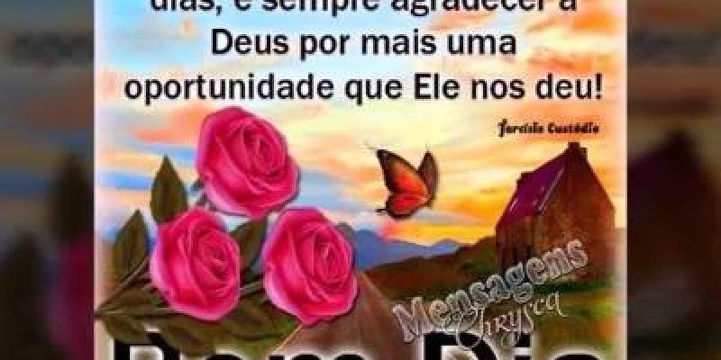 Imagens de Bom Dia Evangélicas rosas