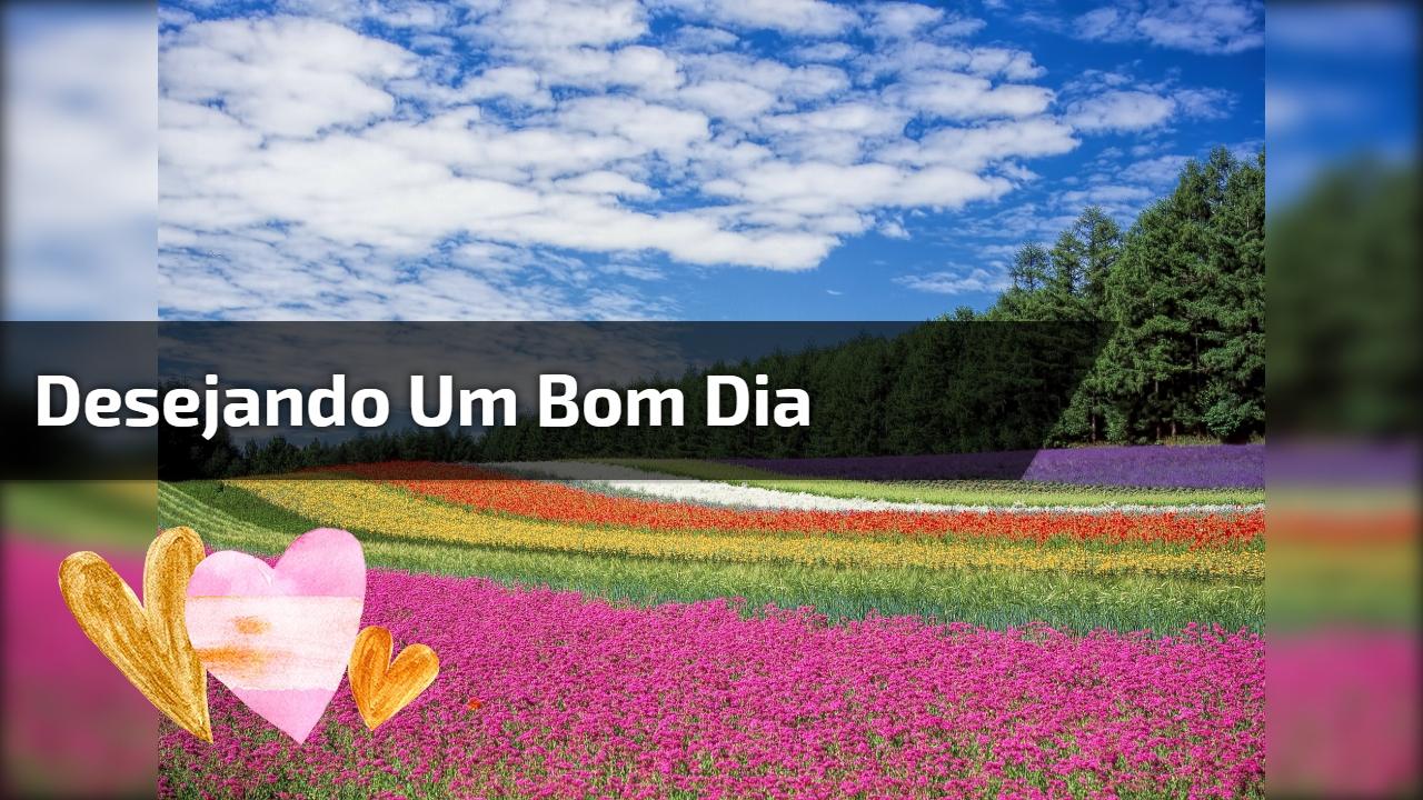 Imagem De Bom Dia Evangélica: Bom Dia Meus Amores ;