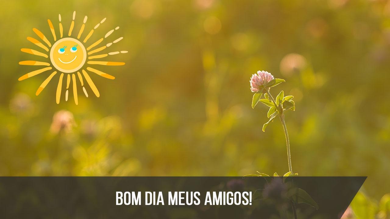 Mensagens Para O Coração Bom Dia Lindo Sábado: Mensagem De Bom Dia Para Amigos! Tenham Todos Um Lindo Dia