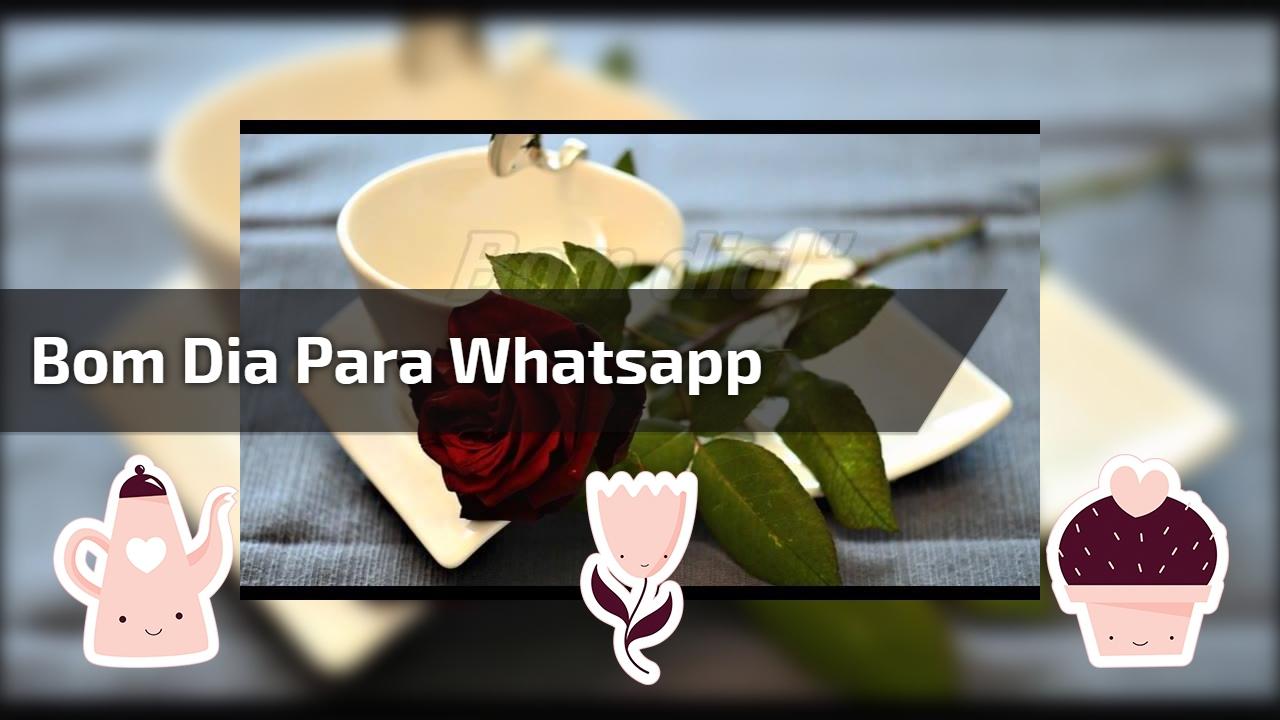 Alegre Bom Dia: Mensagem De Bom Dia Para Whatsapp, Você Deixa Qualquer