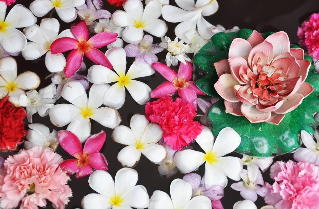 Mensagem De Bom Dia Quarta Feira Com Flores Vá Em Busca De Sua