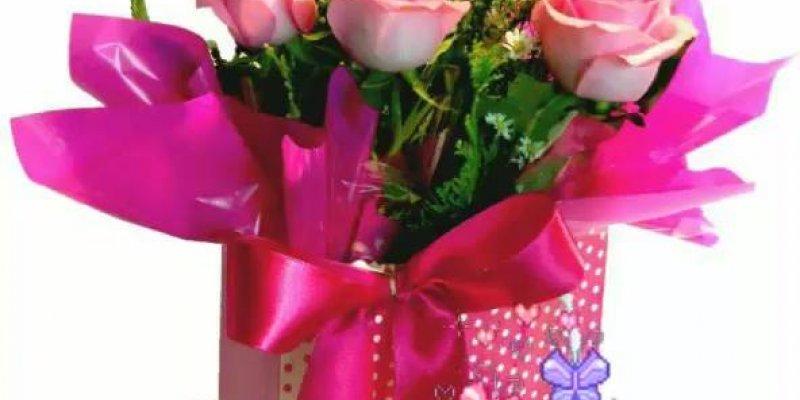Vídeo De Bom Dia Com Lindas Flores De Fundo Para Enviar: Vídeo De Bom Dia Com Flores E Borboletas, Perfeito Para
