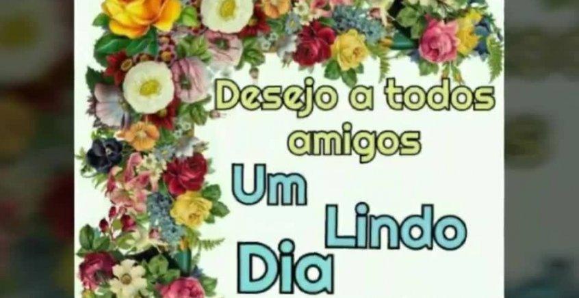 Linda S Imagens De Bom Dia: Video De Bom Dia Com Lindas Flores