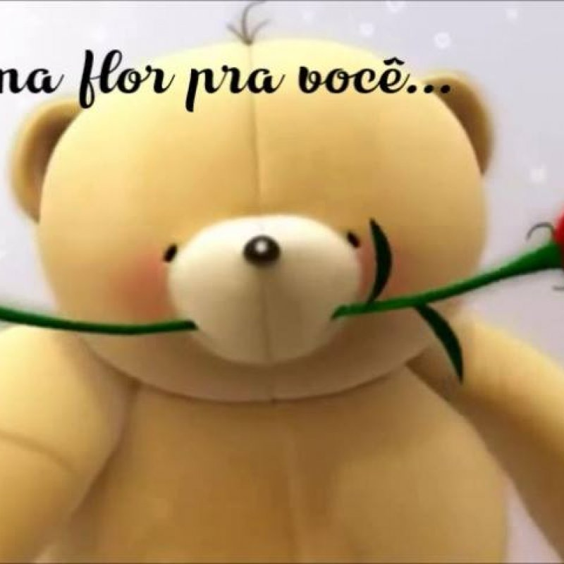 Vídeo De Bom Dia Com Uma Flor E Carinho Para Alguém Especial