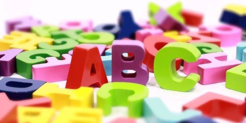 Dia 14 de novembro é Dia Nacional da Alfabetização, um ato de amor!!!