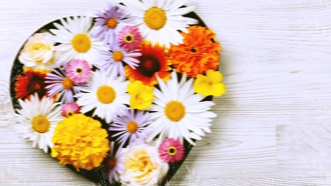 Parabéns Sogra Querida: Feliz Dia Das Mães Para Sogra
