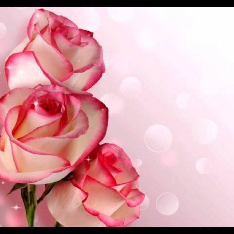 Mensagem De Feliz Dia Das Mães Curta Te Amo Minha Querida Mãe