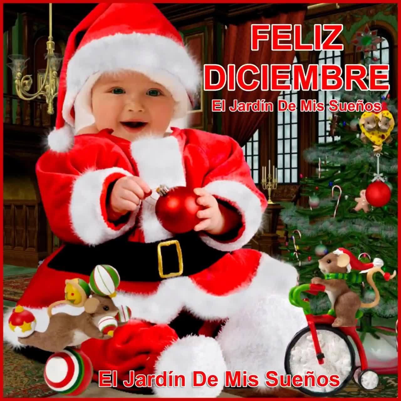 Mensagem De Feliz Natal Para Todos Amigos! Receba Estas