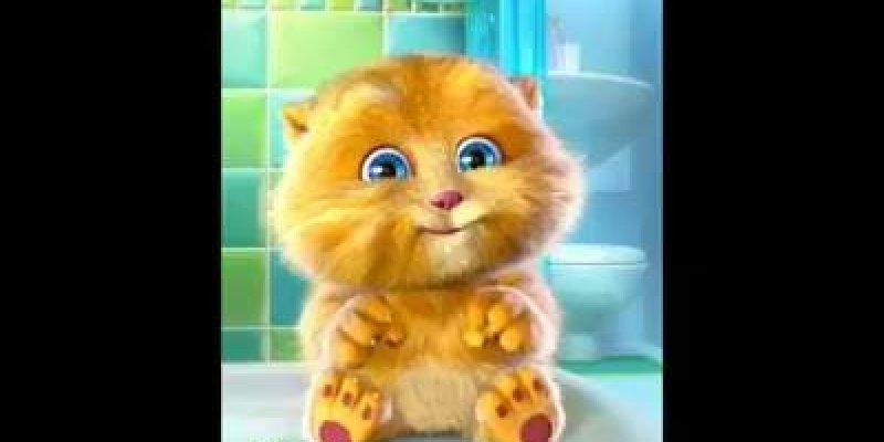 Nunca desiste de seus sonhos - Um recado muito fofo da gatinha!