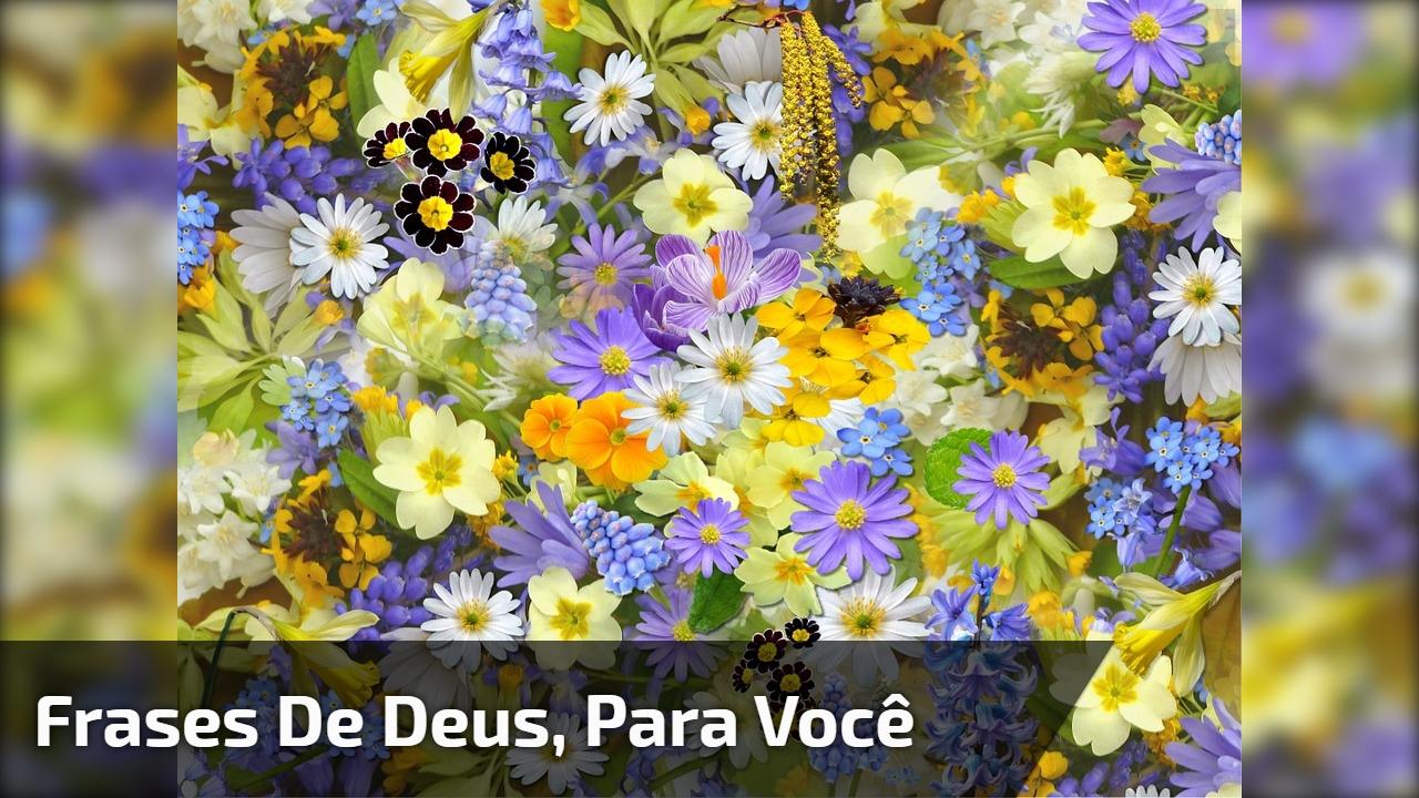 Imagens Com Frases De Deus Compartilhe Em Seu Facebook